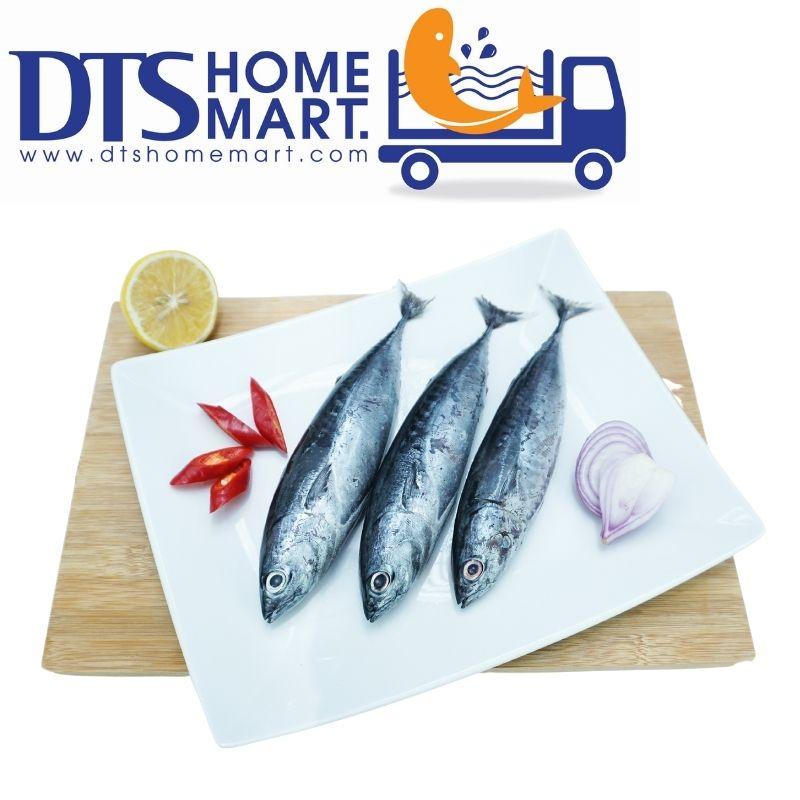 Skipjack Tuna Fish Ikan Tongkol 1kg 4 5pcs